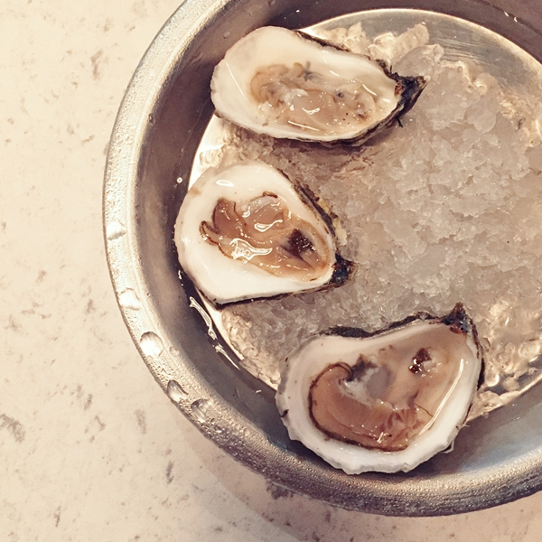 Oysters at Sea Level Charlotte