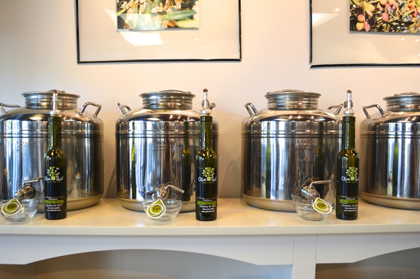 Olive oils at Olive This!
